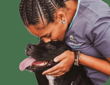 Pet dental at home